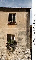 Plants in Windows of Old Building