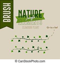Plants nature jungle