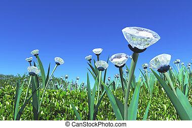 plants of diamonds