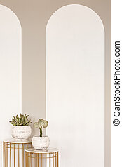 Plants on gold tables in empty white interior with copy space on the wall. Real photo