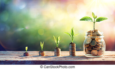 Plants On Money In Increase With Flare Light Effects - Money Growth Concept