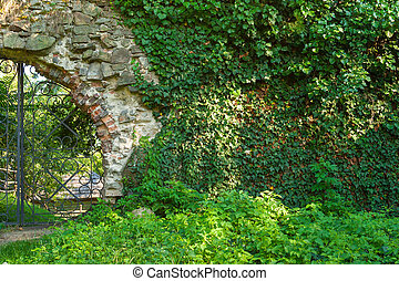 plants on old wall and iron gate - old solid stone wall with...
