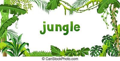 plants., plano de fondo, selva