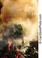 Plants, plastic burning causing air pollution - Plants,...