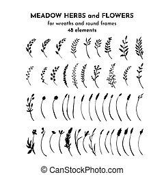 plants., sauvage, brindilles, branches, set., illustrayion, botanique, drawing., vecteur, isolé, pré, bundle., herbes, champ, fleurs, silhouettes