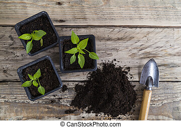 Plants with compost and trowel