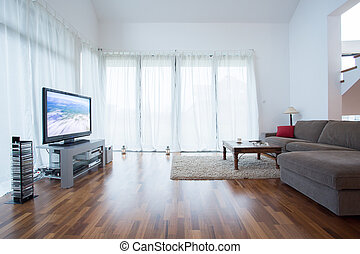 Plasma television in drawing room in modern house