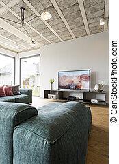 Plasma TV in living room