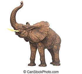 plaster sculpture elephant isolated over white