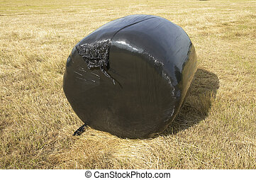 Plastic bale - A hay bale.covered in black plastic in a...