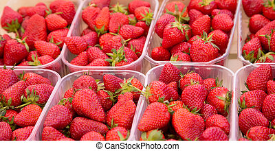 Plastic Baskets of Strawberries