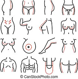 Plastic body cosmetic surgery vector line icons set. Breast...