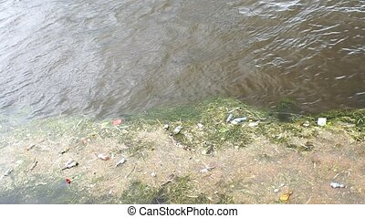plastic bottles and garbage in the river