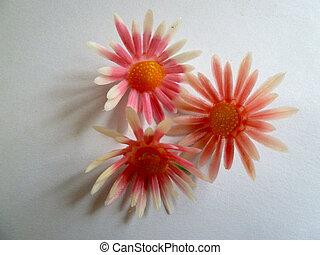 Plastic flowers