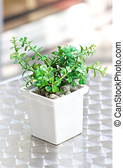 Plastic pot plant decorated on the table.