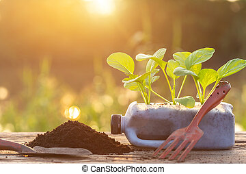 Plastic recycle concept : People planting vegetable in plastic bottle and pile of soil on wooden table