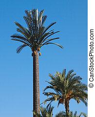 plastik, palme