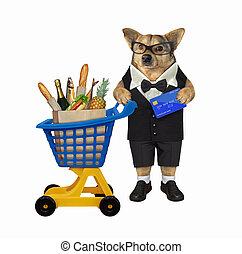 plastique, aliments chiens, chariot, 3