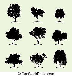plat, arbre, collection, icône