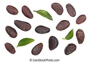 plat, blad, bovenzijde, vrijstaand, cacao, boon, leggen, achtergrond, witte , overzicht.