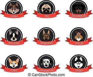 plat, chiens, noms, ascendance, icônes