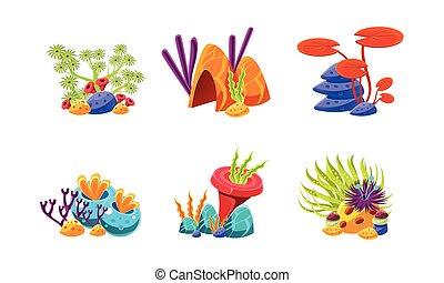 plat, compositions, ensemble, dessin animé, décoration, vecteur, aquarium, stones., marin, algues, éléments