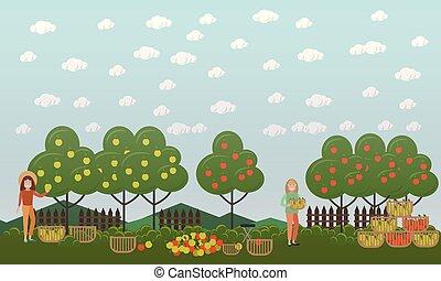 plat, concept, pomme, chasse, saison, illustration, vecteur