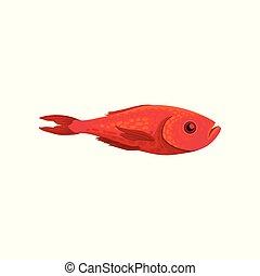 plat, creature., fish, vie, clair, océan, thème, vecteur, mer, petit, vue., marin, côté, rouges, icône