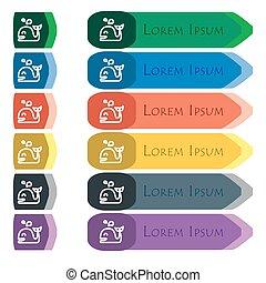 plat, ensemble, additionnel, modules., signe., long, coloré, boutons, clair, conception, petit, baleine, icône