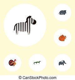 plat, ensemble, animal, écureuil rayé, elements., icônes, écureuil rayé, objects., inclut, symboles, aussi, vecteur, coffre, hippopotame, behemoth, trunked, zoo, autre