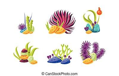 plat, ensemble, stones., océan, fantasme, vecteur, algue, mer, life., dessin animé, plants., marin, compositions