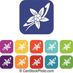 plat, fleur, bâtons, icônes, vanille, ensemble