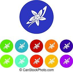 plat, fleur, ensemble, bâtons, icônes, vanille, vecteur