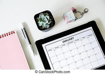 plat, fleur, succulent, mockup, concept., bureau, calendar., stylo, planification, cahier, poser, bureau, vue, aérien, sommet
