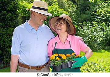 plat, jardin, couple, personne agee, fleurs, heureux