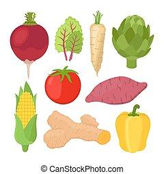 plat, jardin, végétarien, style., vecteur, légume, nutrition., dessin animé, set.