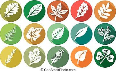 plat, (leaves, feuille, icônes, icons), ensemble