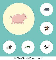 plat, oiseau, ensemble, elements., icônes, reptile, vivant, inclut, symboles, aussi, vecteur, hippopotame, objects., coq, coq, autre, hippopotame