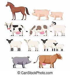 plat, paarde, koe, sheep., boerderij, set., illustratie,...