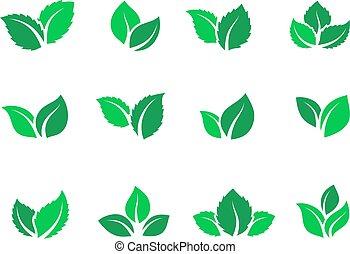 plat, plante, ensemble, feuille, logos, nourriture, feuilles thé, vegan, énergie, eco, vecteur, forêt verte, label., herbier, ferme, set., simple