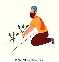 plat, plante, style, récolte, agenouillement, indien, tenue, paysan, dessin animé, homme
