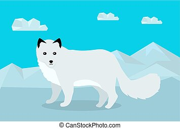 plat, renard polaire, illustration, vecteur, conception