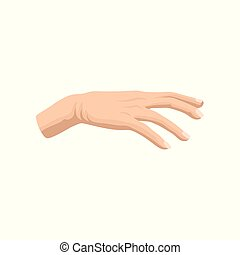 plat, salon, femme, beauté, classique, affiche, ou, main, s, vecteur, publicité, icône, élément, bannière, manicure., homme