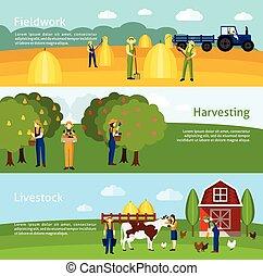 plat, set, 3, horizontaal, landbouw, banieren