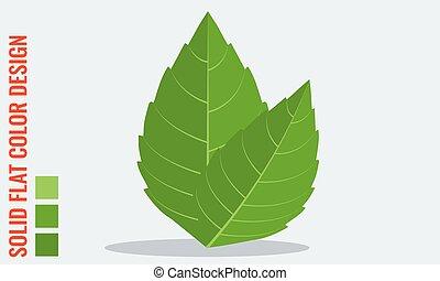 plat, solide, feuilles, couleurs, vecteur, frais, menthe, ...