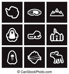 plat, stijl, set, arctisch, black , witte , pictogram