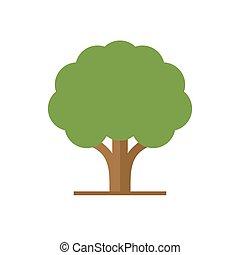 plat, style, feuilles, arbre, vecteur, vert, logo.