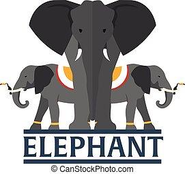 plat, vecteur, illustration., éléphant