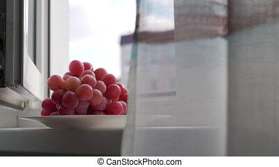 Plate with bunch of red grapes on windowsill of open apartment window