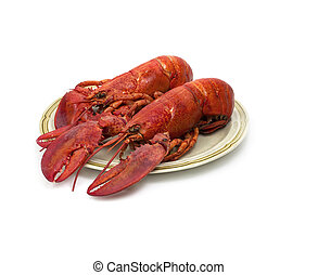 Plate with two red lobsters on white background